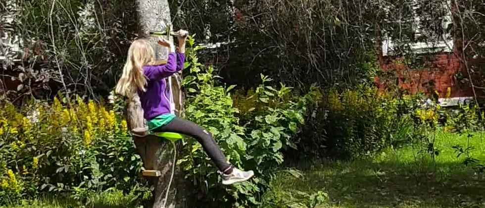 Zipline i trädgården