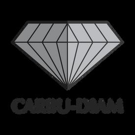 Nouveau site web Carbu Diam!