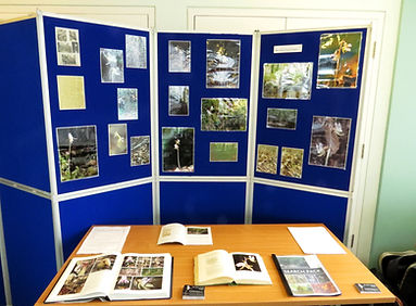 The Ghost Orchid Project BSBI stand