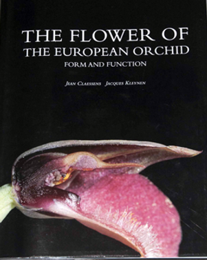 The flower of the European orchid - Form and function