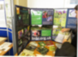 BSBI Annual Exhibition 2014