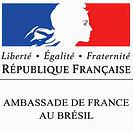 logo ambassade de france