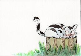 Piggy and Cat
