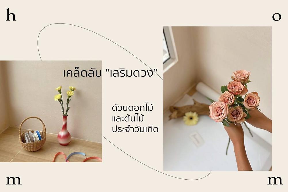 ต้นไม้และดอกไม้ประจำวันเกิด เสริมดวง