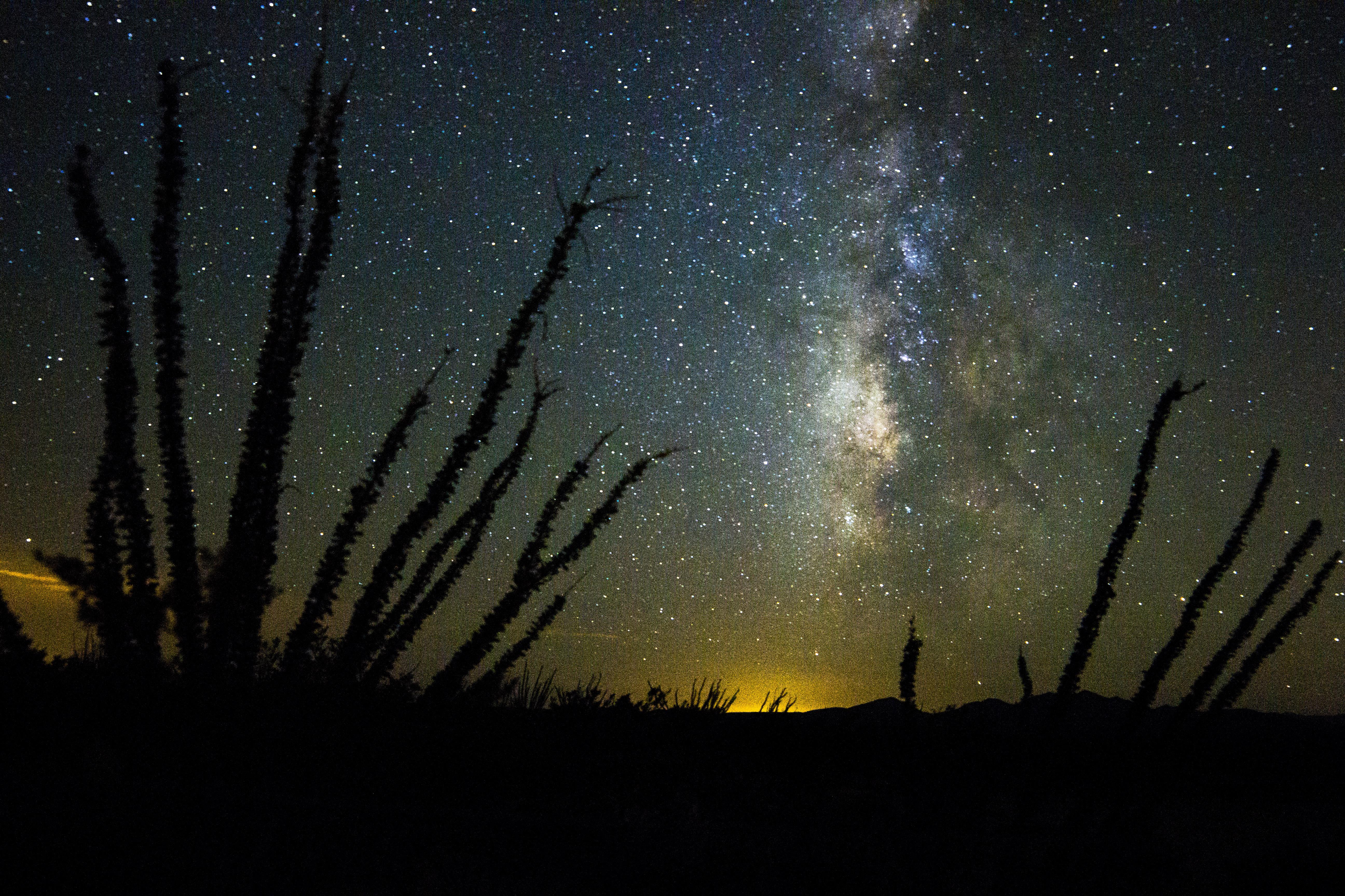 A Desert Starscape