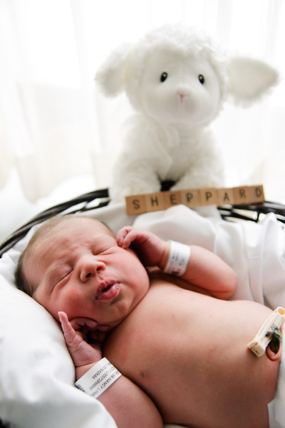 "a baby with closed eyes and a pouty face lays in a dark basket with sheet in front of a white curtain with a white stuffed sheep over his shoulder. his name ""sheppard"" is written on scrabble letters next to him. baby has hospital wristbands on and his umbilical cord is clamped."
