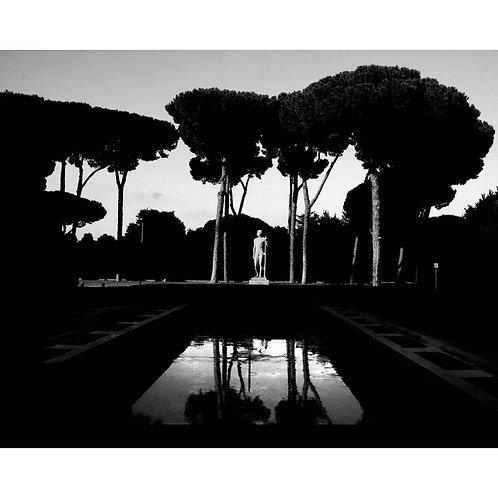ROMA #08
