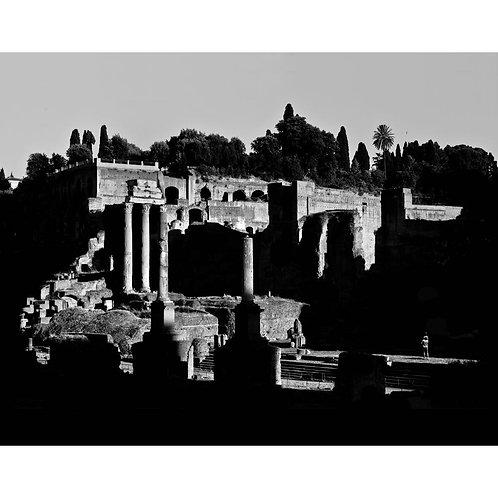 ROMA #12