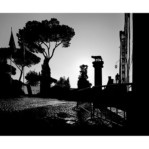 ROMA #22