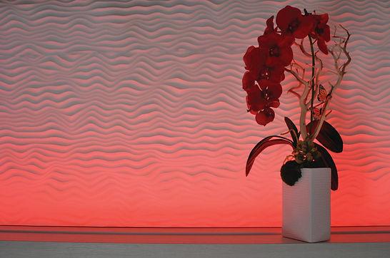 Shelf Red Pitch Flower.jpg