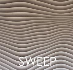 SWEEP DOOR