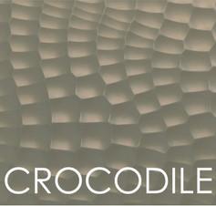 CROCODILE DOOR