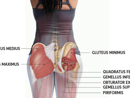 The Glutes: Are They the Cause of Your Pain?