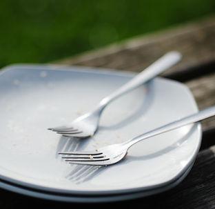 Empty Plate.jpg