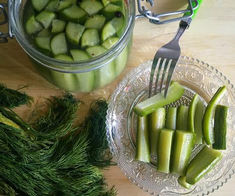 Fresh Dill Pickles