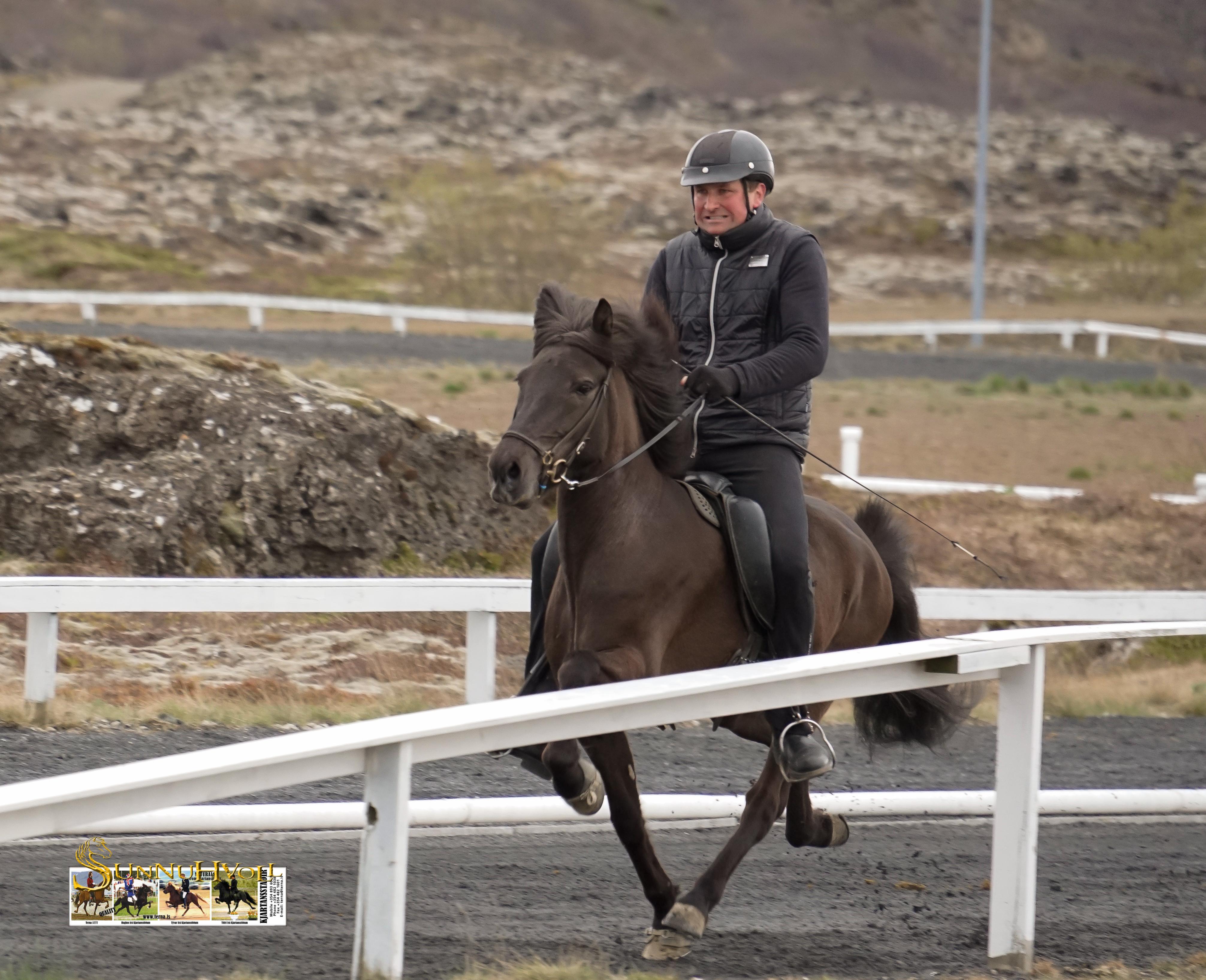 Náttfríður frá Kjartansstöðum