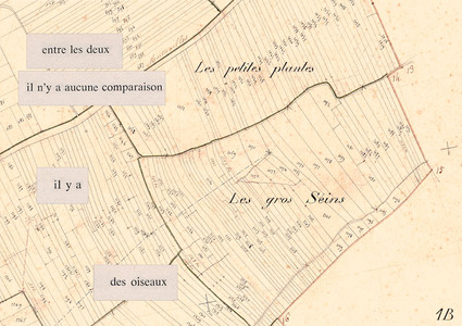 Mathilde Roux, Bords tracés 2, collage cadastre