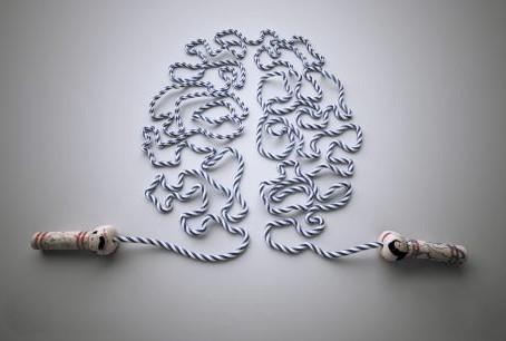 Ուղեղի մասին (նեյրոպլաստիկություն)