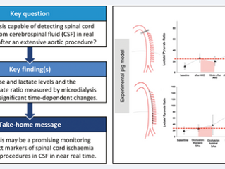 Publication on near real-time detection of spinal cord ischaemia