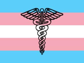 Covereadora Carolina Iara comenta sobre atendimento médico a pessoas transexuais