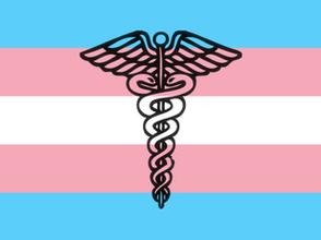 São Paulo falha em fornecer saúde para pessoas transexuais