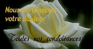 condoleances-nous-partageons votre doule