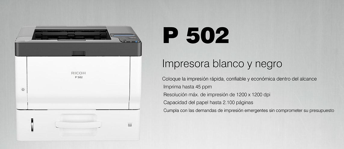 p502.jpg