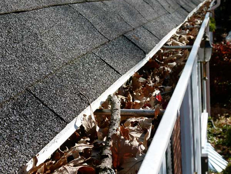 Getting ready for Winter   Gutter cleaning.