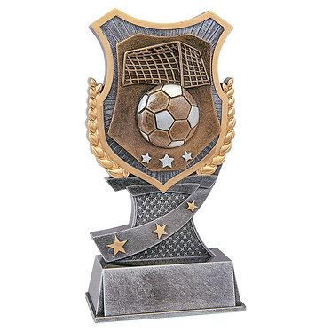 Soccer Shield Award
