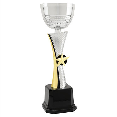 Silver Star Metal Cup