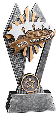 Star Performer Sun Ray Award