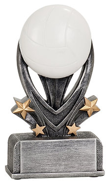 Volleyball Varsity Sports Resin