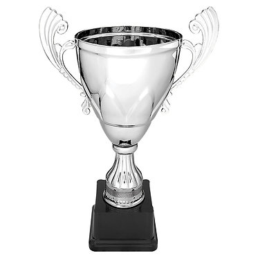 Silver Metal Cup