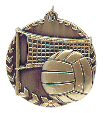 Volleyball Millennium Medal - STM1215