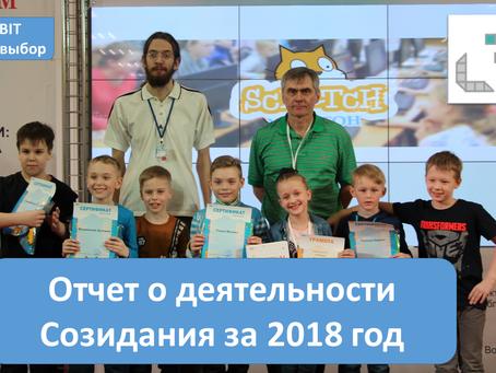 Отчет о деятельности Созидания за 2018 год