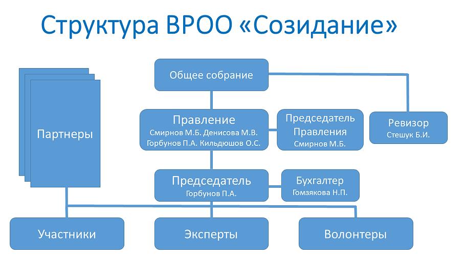Структура Созидание 2020.png