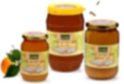 דבש בריאות של מכוורת נגוהות, מפרחי בר, מפרחי הדרים, מפרחי אקליפטוס ומפרחי אבוקדו