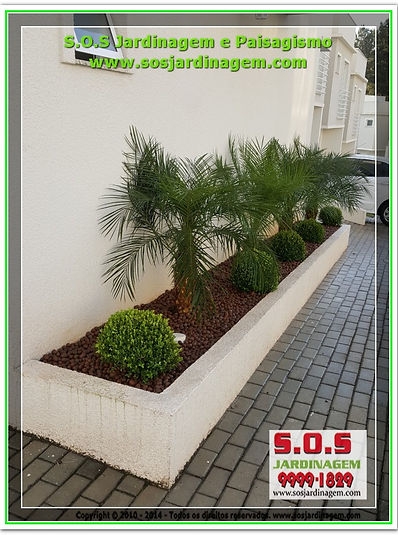 1642 #S.O.S Jardinagem #Jardim Vertical