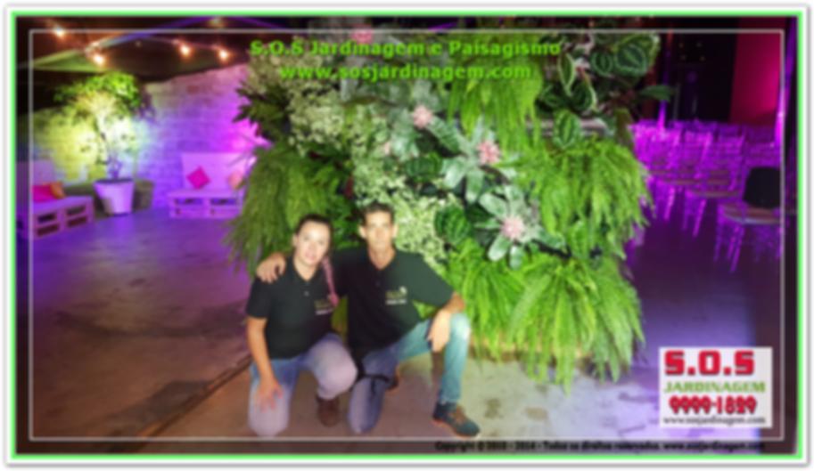 #Parede Verde #Jardim Vertical #Deck  #Paisagismo09_05_2018
