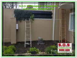 2031 #Jardinagem e Paisagismo.