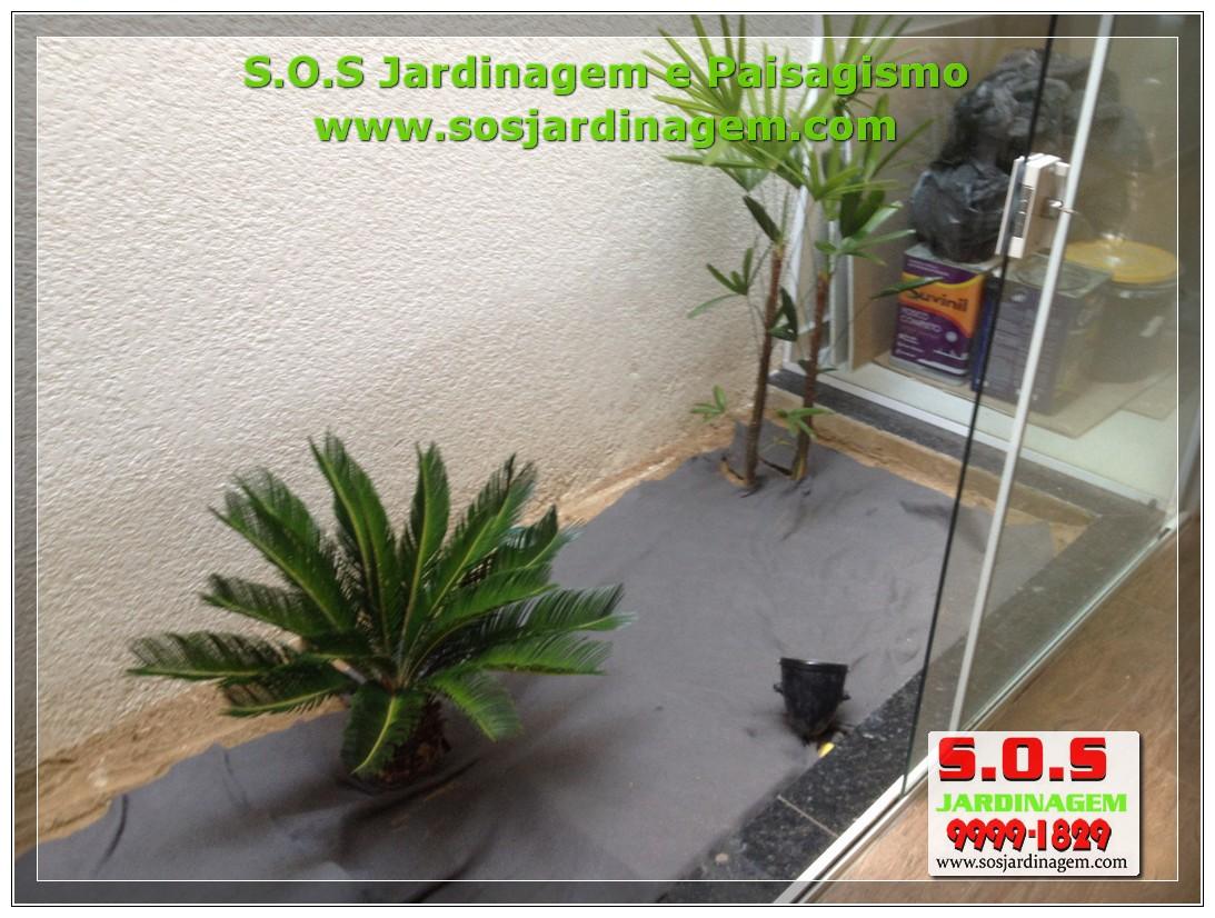 Paisagismo interno IMG_3166.jpg