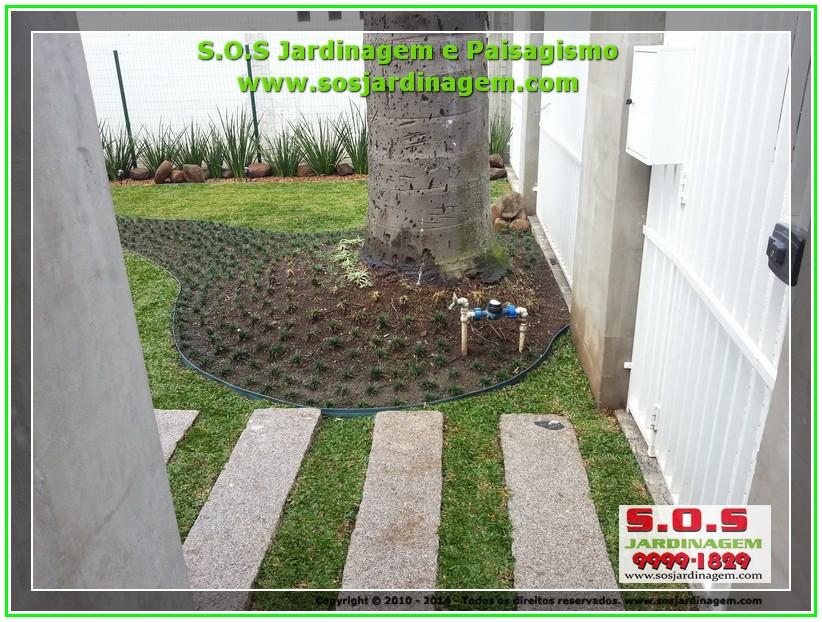 2014-08-14_00009 S.O.S Jardinagem e Paisagismo.jpg