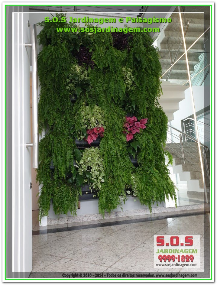 #Jardim Vertical #Parede Verde #Cliente ( Caroline )20200116_143252