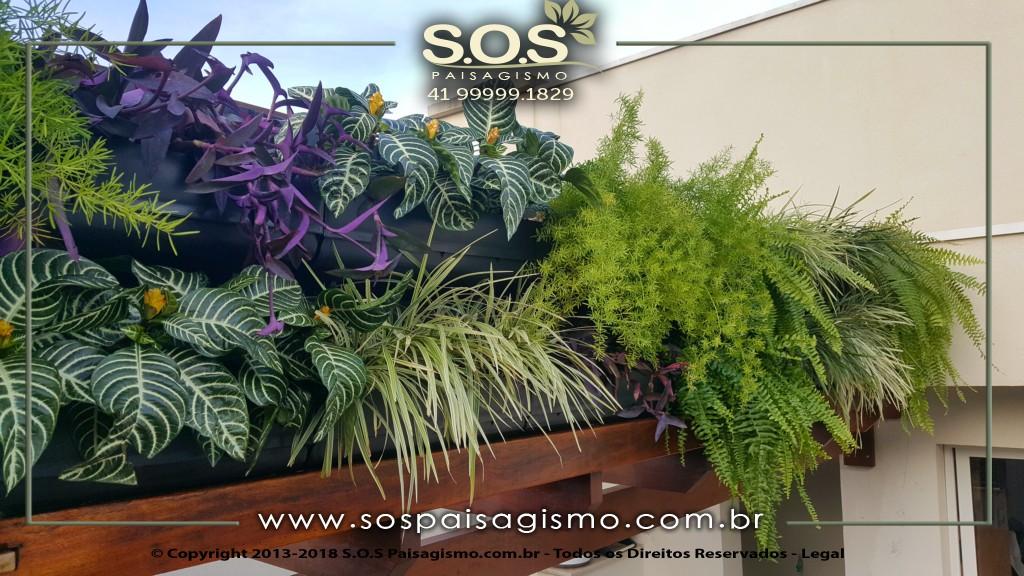 Fotos e plantas de Jardim vertical