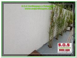 S.O.S Jardinagem e Paisagismo 2016-05-09_00012 S.O.S Jardinagem e Paisagismo.png