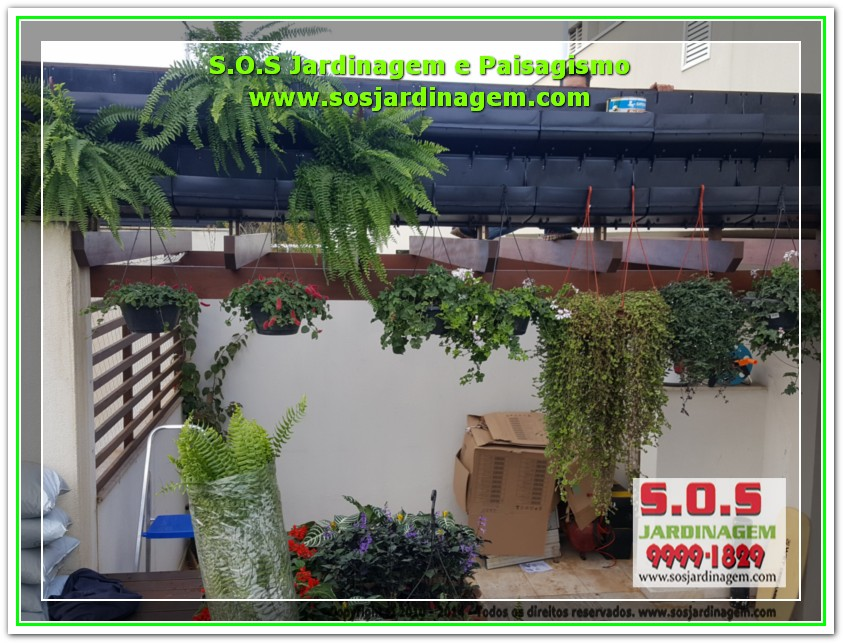 S.O.S Jardinagem 20170623_163159