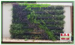 S.O.S Jardinagem e Paisagismo Deck Arquivil  00318