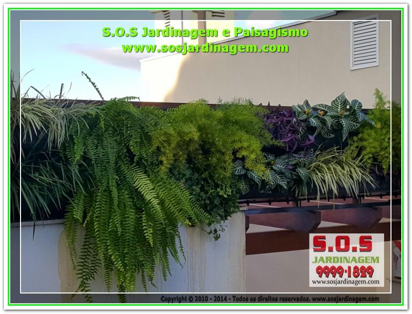 S.O.S Jardinagem 20170624_164405