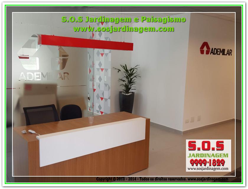 Paisagismo 20180809_110928