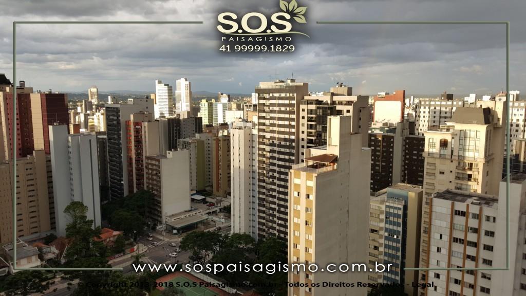 Paisagismo em Curitiba